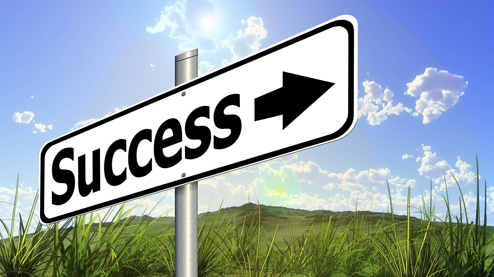 success (2).jpg